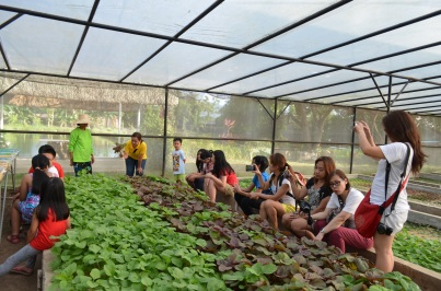 Learning about hydroponic farming
