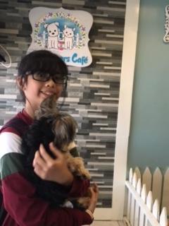 Pet Lovers Cafe_BigNLilSis_SAHMotsari