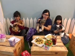 SAHMotsari at Pet Lovers Cafe